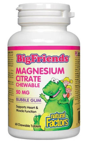 Big Friends Magnesium Chewable for Kids