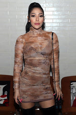 Hot Sheer Ruched Dress