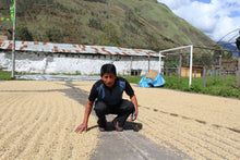 Load image into Gallery viewer, PERU CUSCO FREDY HECTOR ESPINOZA ACHANCCARAY (FAIR TRADE & ORGANIC)