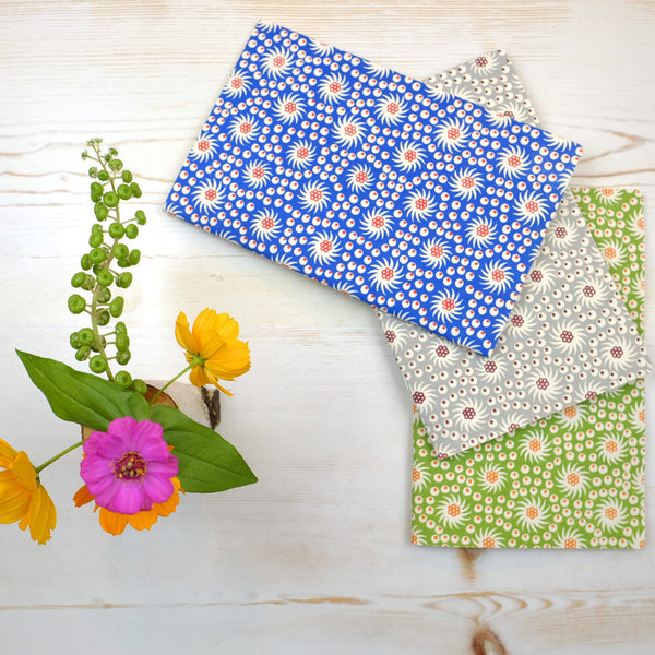 French Pinwheel Notebooks