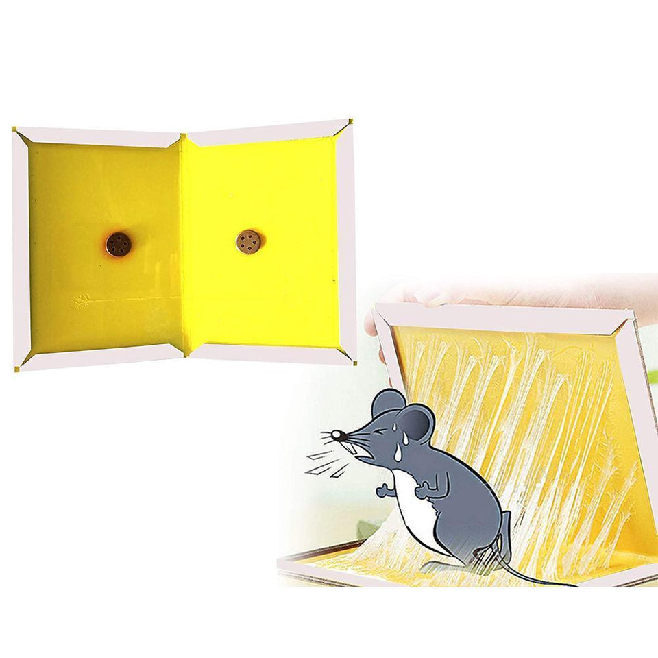 0245 Rodents Trap - Mouse Trap Non-Toxic Glue Pad - mstechindia.com
