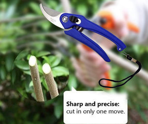 0465 Stainless Steel Garden Scissors