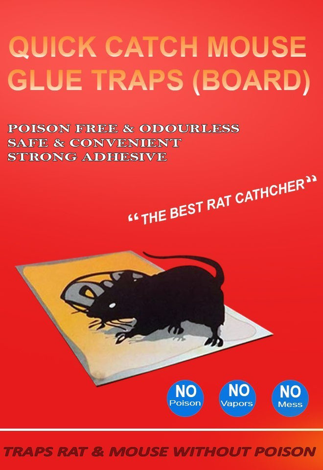 0203 Red Mice Glue Traps (1pc) - mstechindia.com