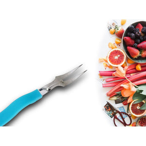 0789 Stainless Steel Fruit Fork Set Of 10 Pcs