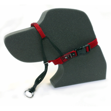 Load image into Gallery viewer, Black Dog Training Halter