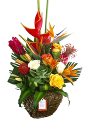 C8761 - Tropical Arrangement