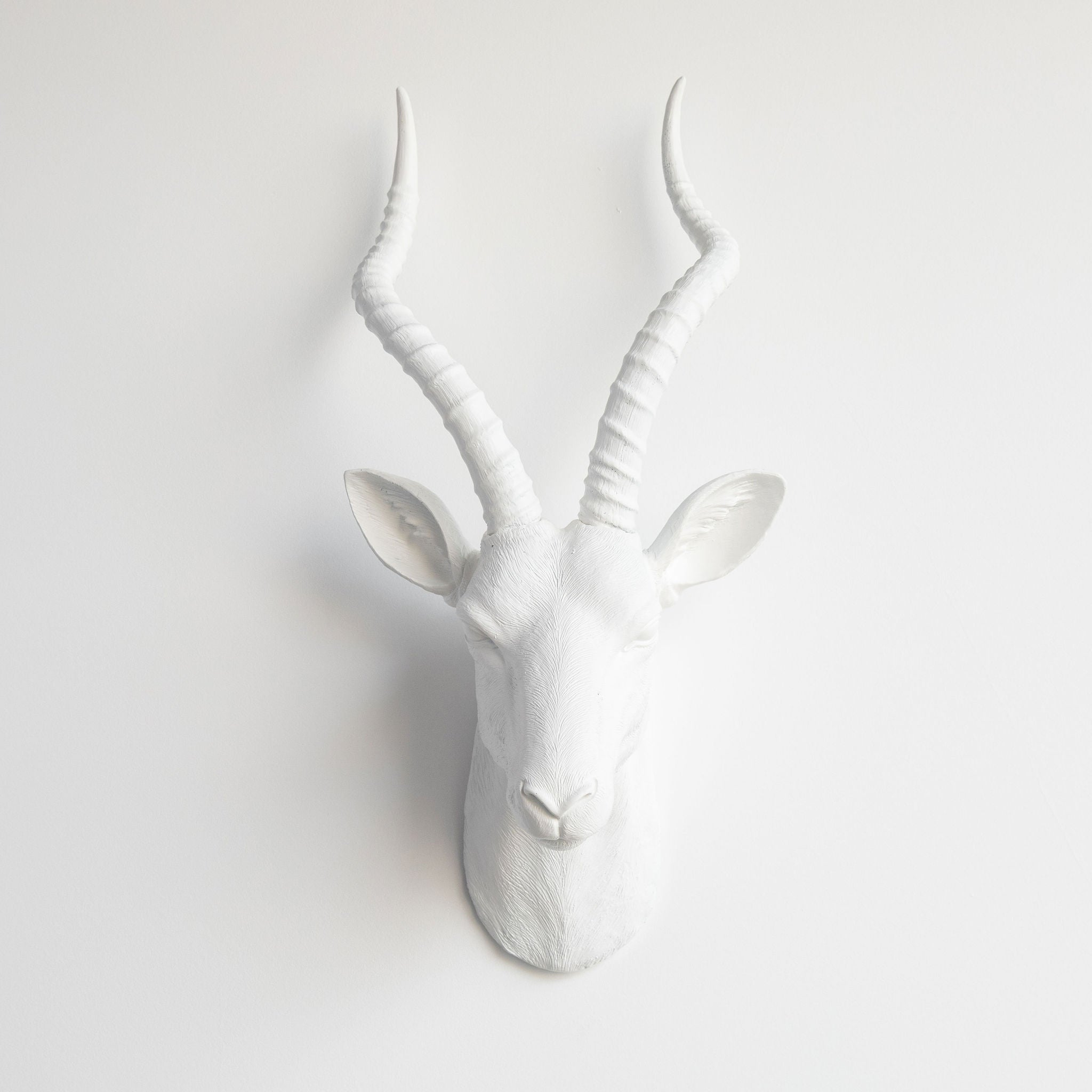 Faux Antelope Head Wall Mount // White