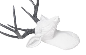 aux Deer Head Wall Mount // White and Gray