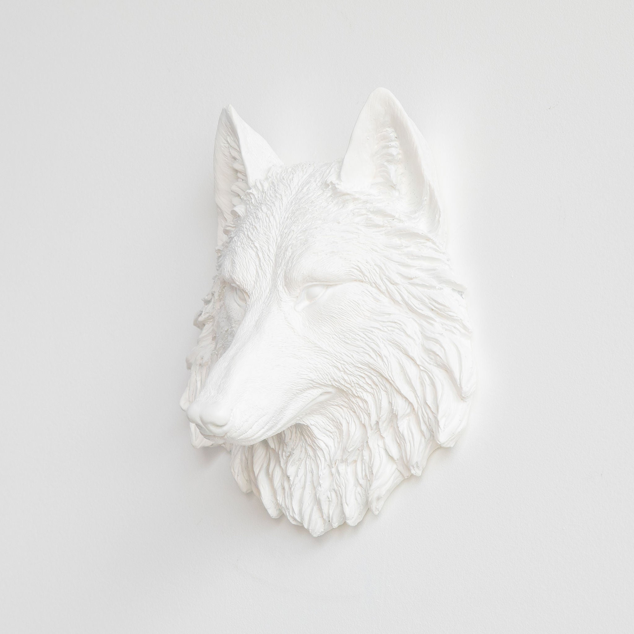 Faux Small Wolf Head Wall Mount // White