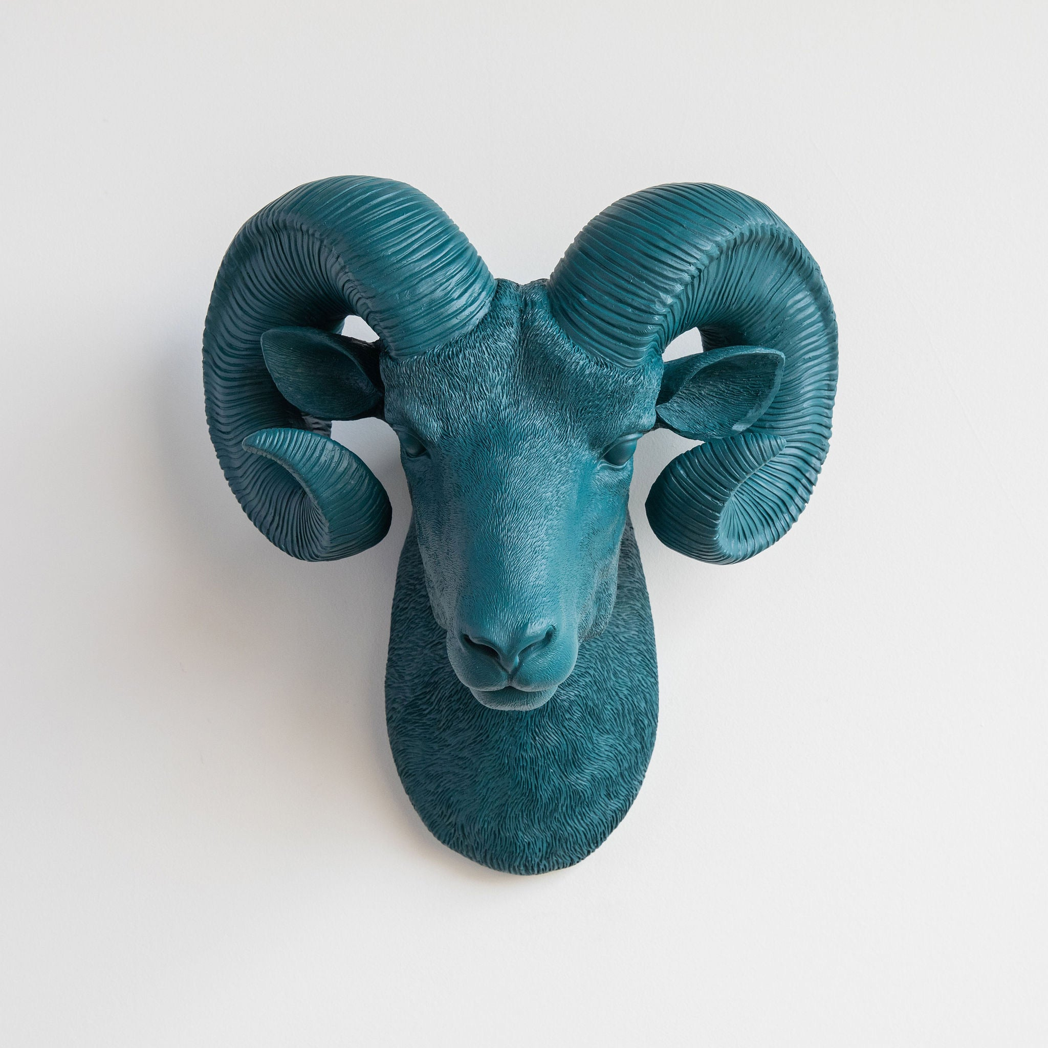 Faux Ram Wall Mount // Teal