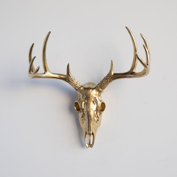 Mini White Deer Skull // Gold