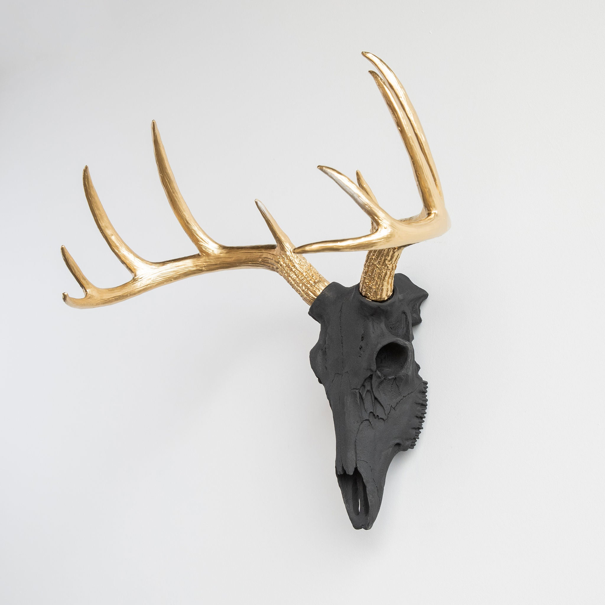 Faux Whitetail Deer Skull // Black and Gold