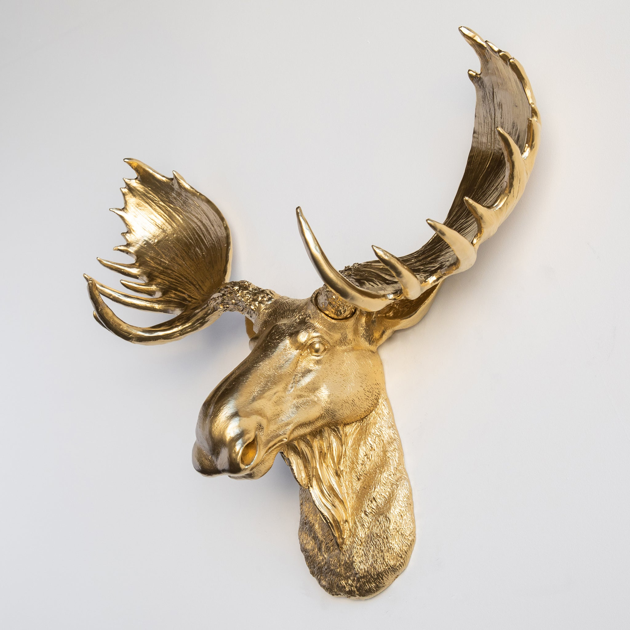 Faux Moose Head Wall Mount // Gold