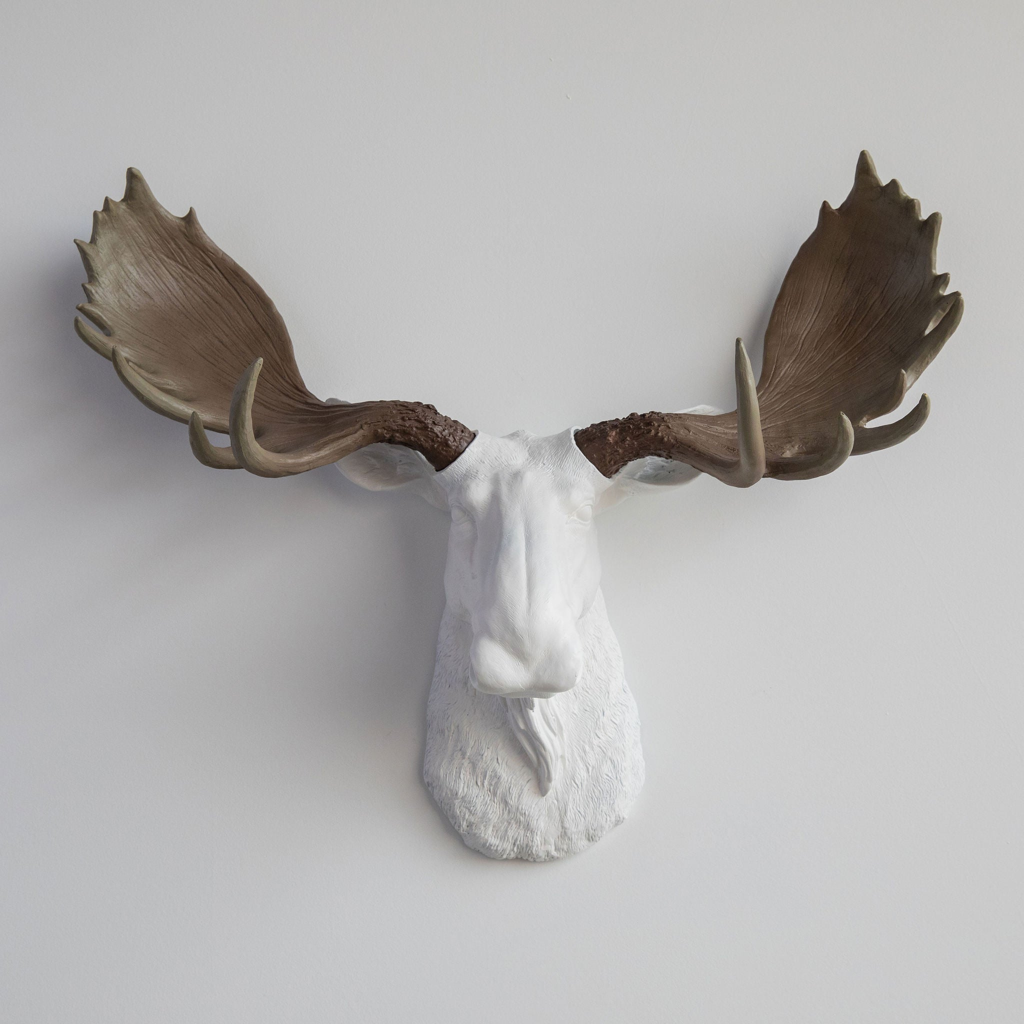Faux Moose Head Wall Mount // White with Natural Antlers