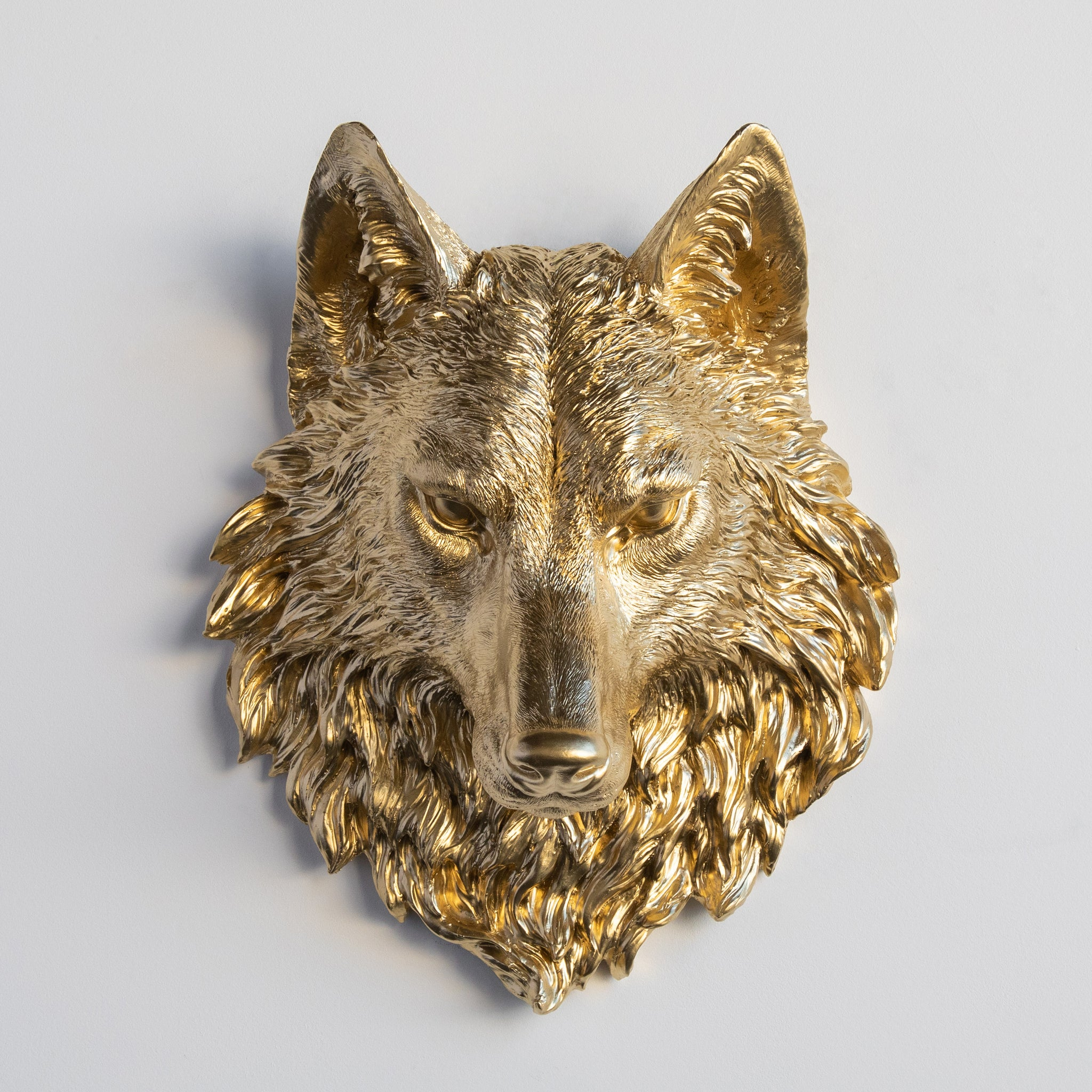 Faux Wolf Head Wall Mount // Gold
