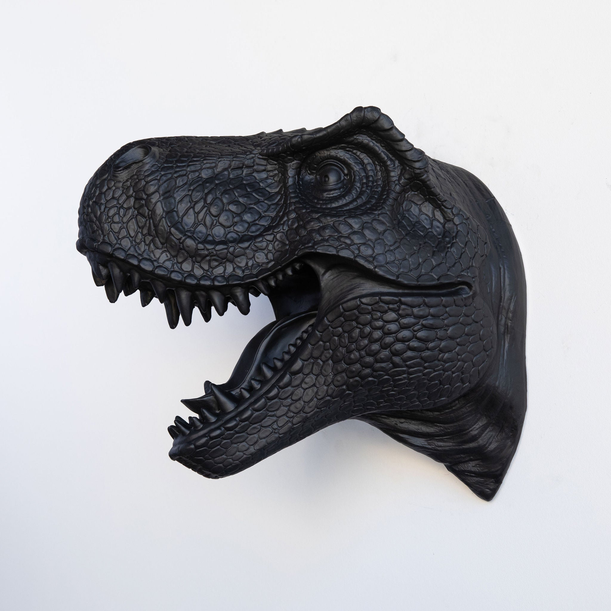 T-Rex Dinosaur Head Wall Mount // Black