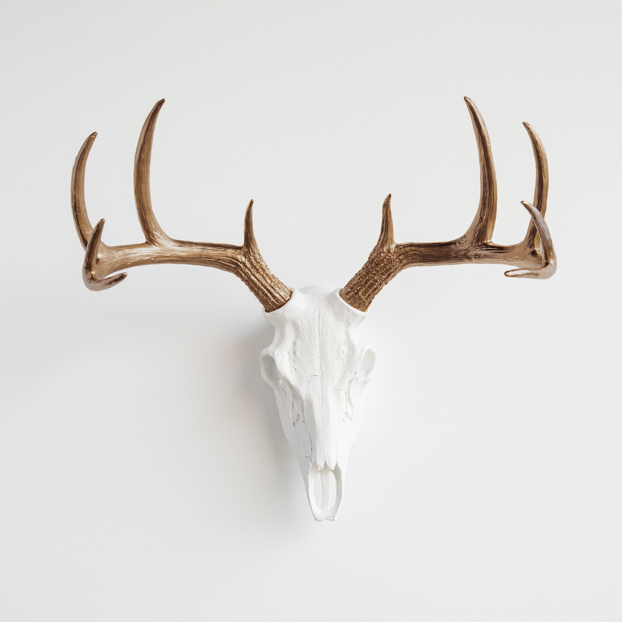 Faux Whitetail Deer Skull // White and Bronze