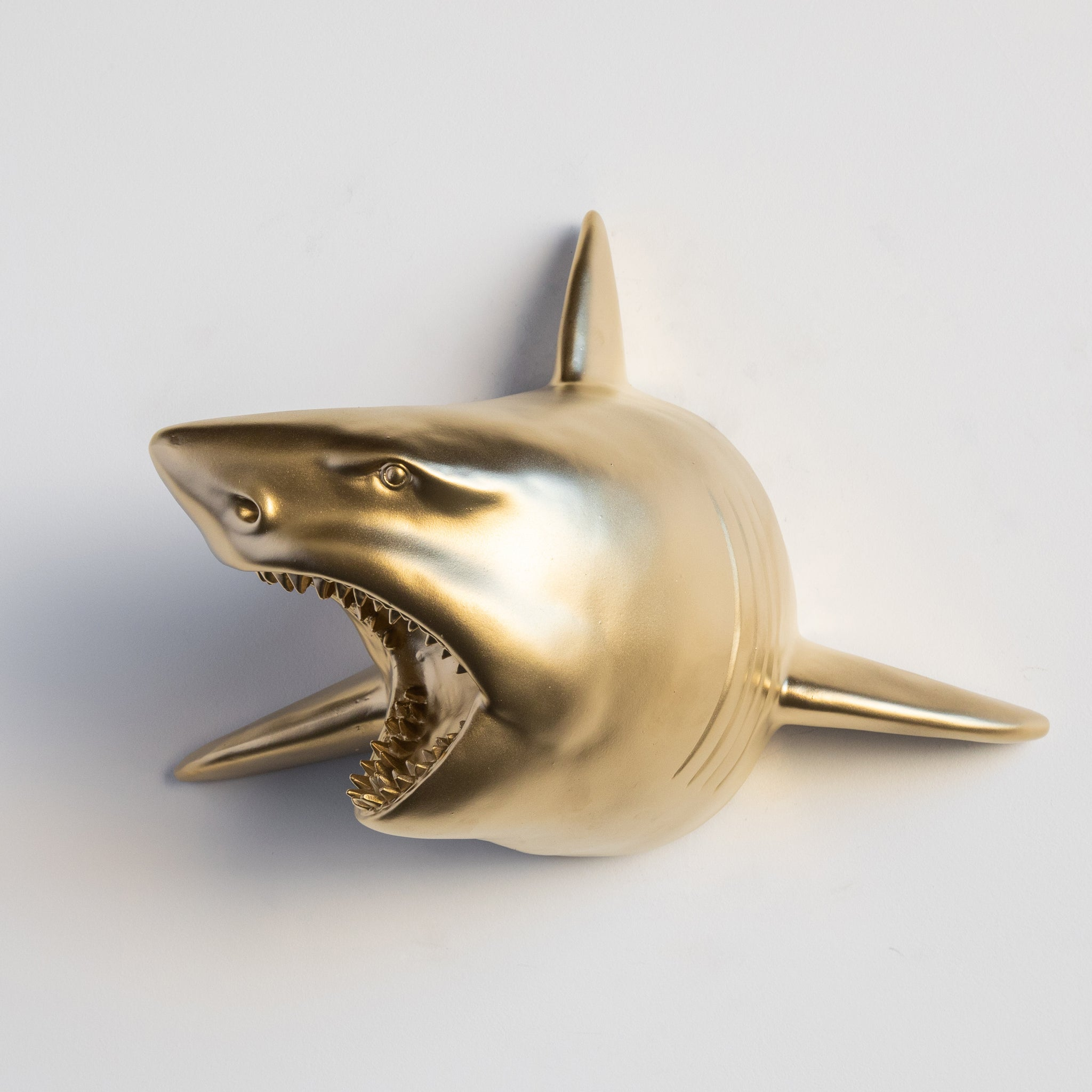Faux Shark Head Wall Mount // Gold