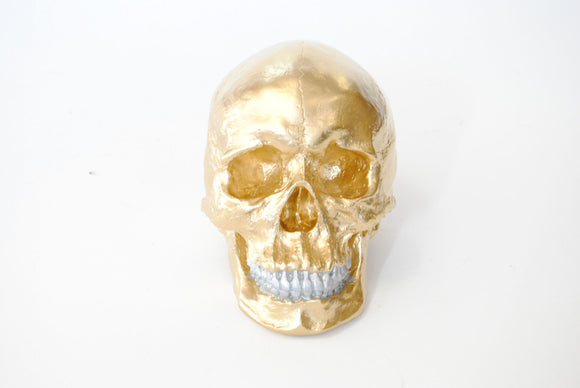 Faux Human Skull Décor // Gold with Silver Teeth