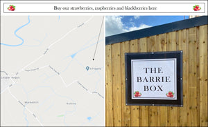 thebarriebox