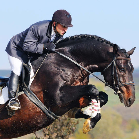 Brown horse with rider jumps over obstacle