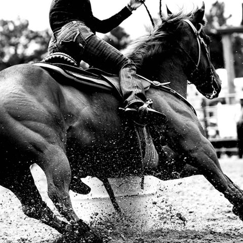 High contrast, black and white closeup of a rodeo Barrel Racer making a turn at one of the barrels
