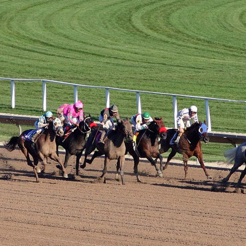 Wide shot of horses racing down track
