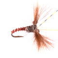 Dead Bug Caddis