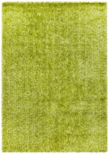 Load image into Gallery viewer, Orlando  Collection Lime Rug