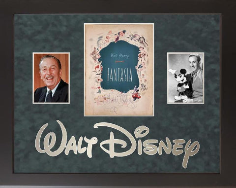 Walt Disney Book