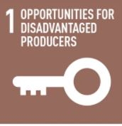 Opportunities for disadvantaged producers