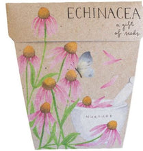 Load image into Gallery viewer, Echinacea Seeds