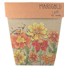 Load image into Gallery viewer, Marigold Seeds