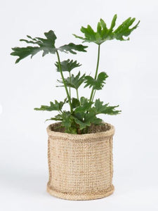 Jute Planter Basket