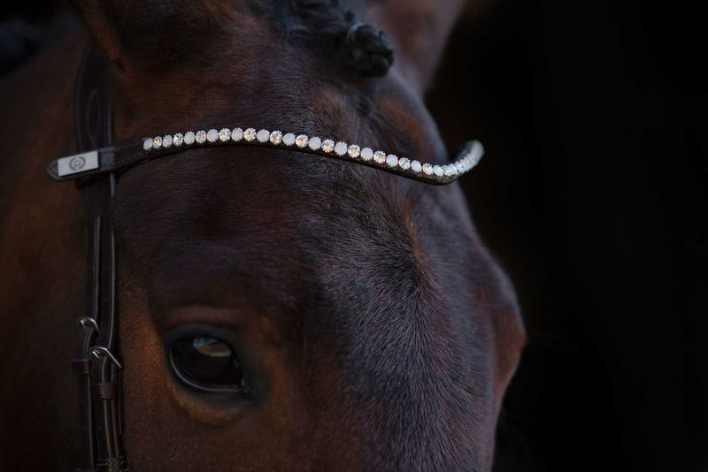 PS of Sweden Broadband - Sleek Alaska - The Dressage Store