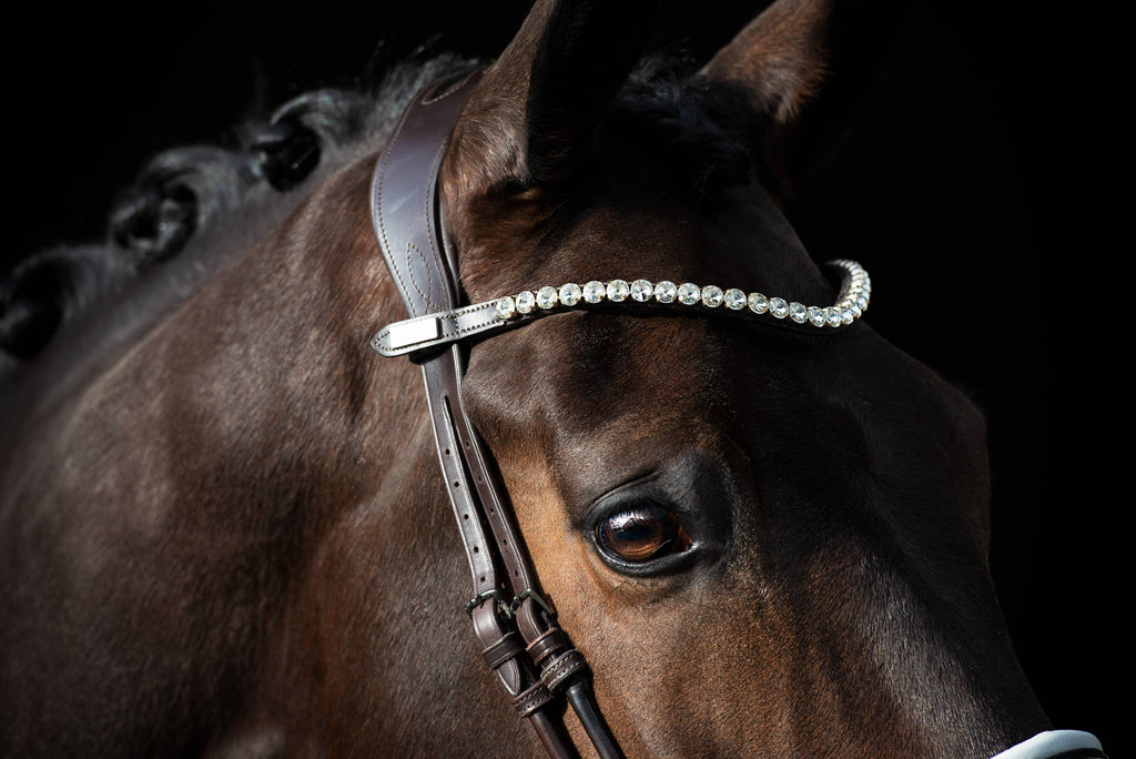 BOLD Crystal Browband by PS of Sweden - The Dressage Store