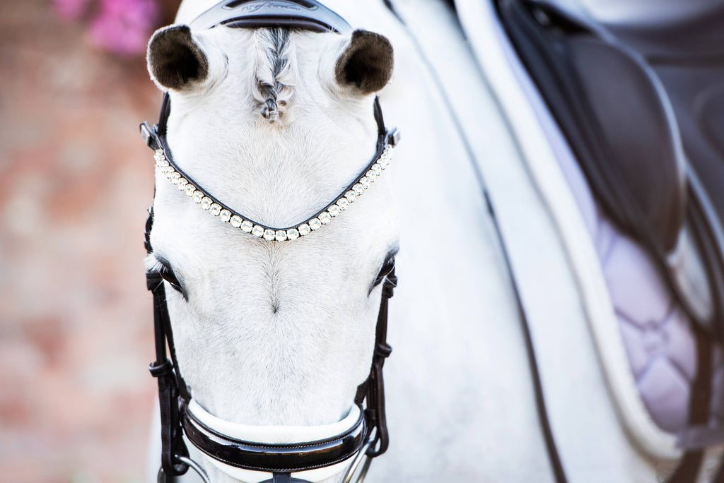 PS of Sweden Browband - BOLD Crystal - The Dressage Store