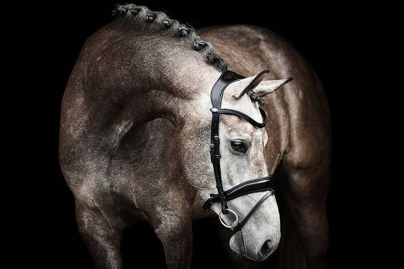 PS of Sweden Bridle - Flying Change - The Dressage Store