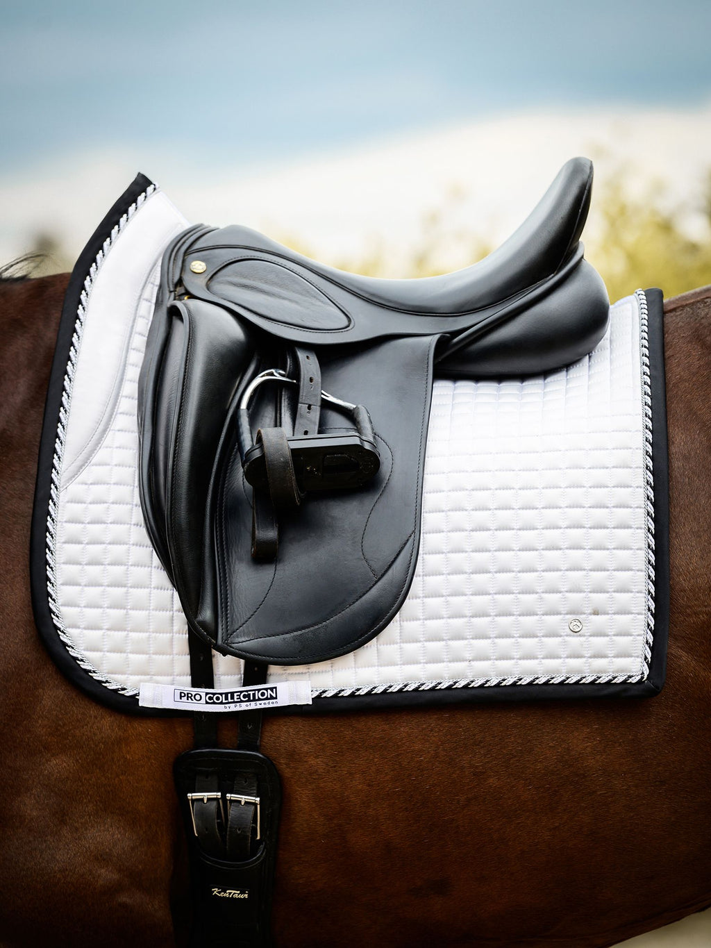 PS of Sweden PRO 2 White/Black Dressage Saddle Pad - The Dressage Store