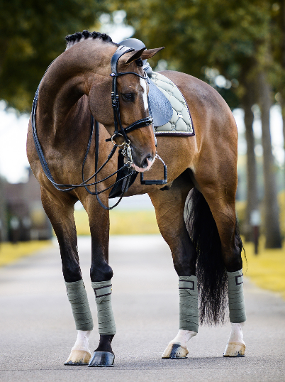 PS of Sweden Polo Wraps  - Moss - The Dressage Store