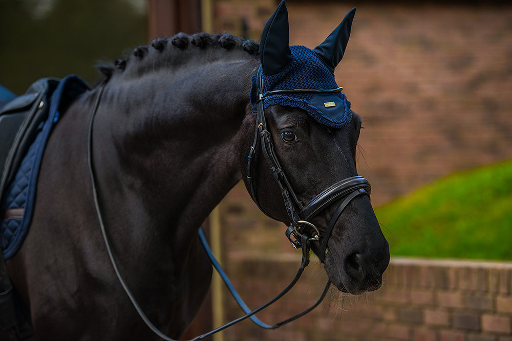 Equestrian Stockholm Padded Ear Bonnet - Navy Gold - The Dressage Store