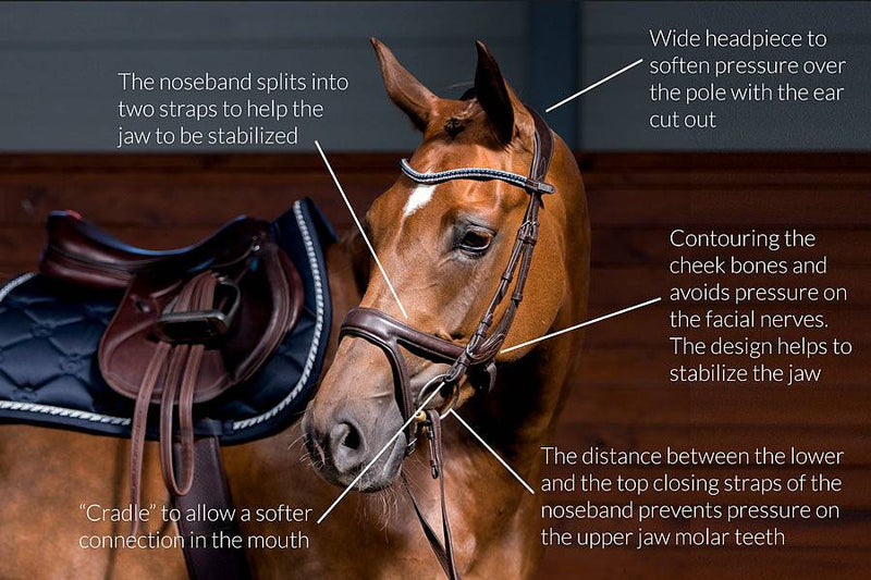 PS of Sweden Bridle - Jump Off - The Dressage Store