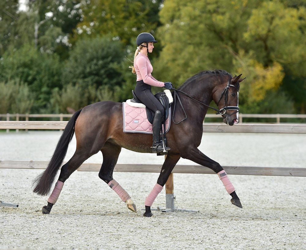 Equestrian Stockholm Dressage Saddle Pad - Pink Pearl - The Dressage Store