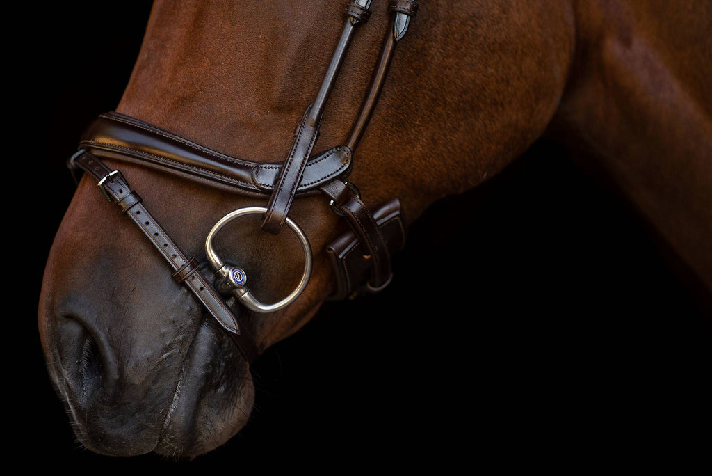 Double Bridle Paragon - The Dressage Store