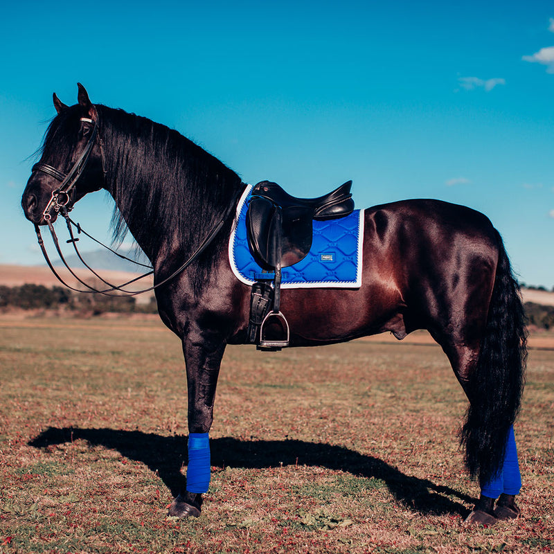 Equestrian Stockholm Polo Wraps - Sapphire - The Dressage Store