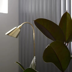 Arne Jacobsen Brass Bellevue Floor Lamp in Room with Plant And Tradition