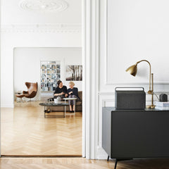 Vifa Copenhagen Soundspeaker with Egg Chair