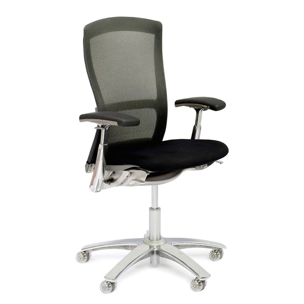 Life Office Chair by Formway for Knoll