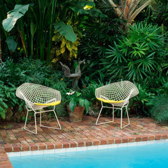 Bertoia Diamond Chairs in White Rislan Outdoor Finish with Yellow Cushions by Pool Knoll