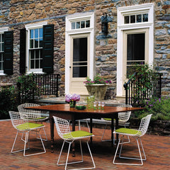 Harry Bertoia Side Chairs White Lime Cushions Stone House Outdoors Knoll